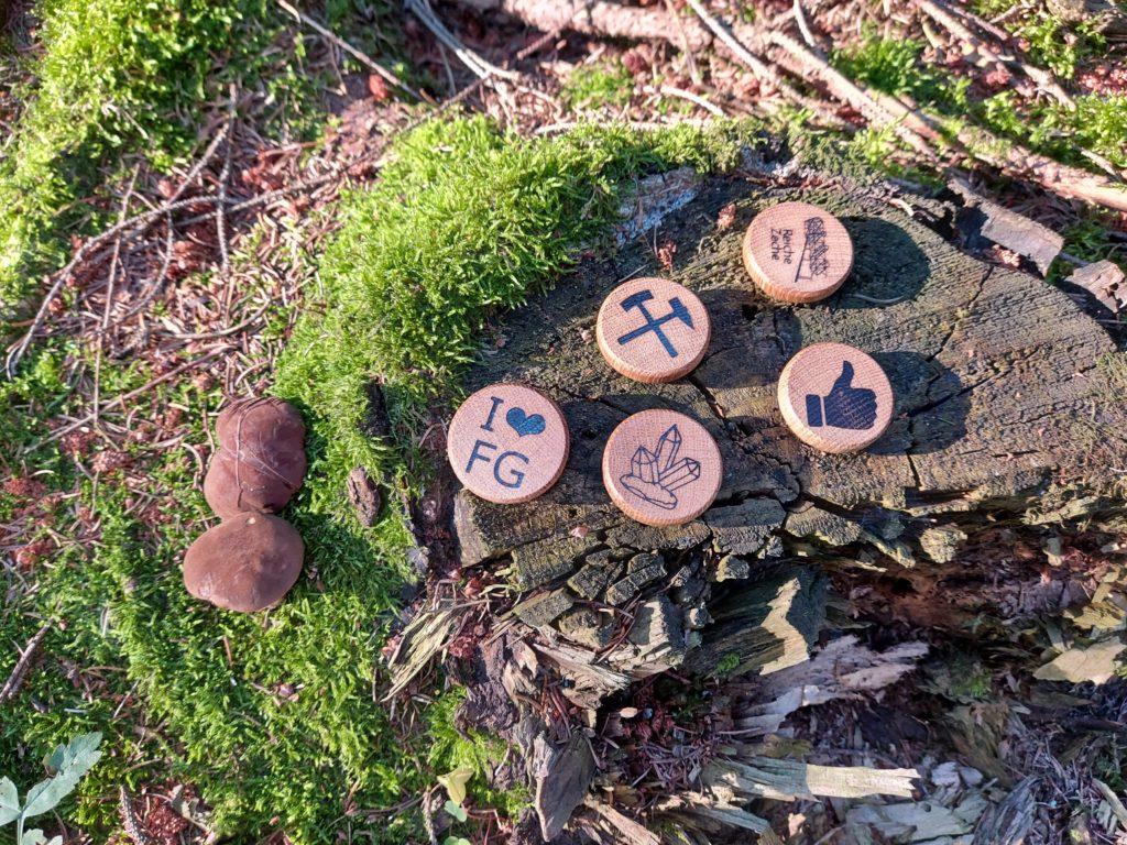 MemoMia - Souvenirmagnete auf einem Baumstumpf mit Moos und Pilzen